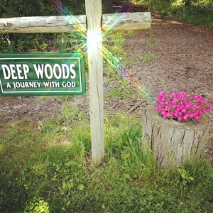 Deep Woods- a journey with God 5 12